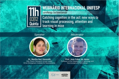 Webinário internacional Catching cognition in the act: new ways to track visual processing, attention and learning in mice